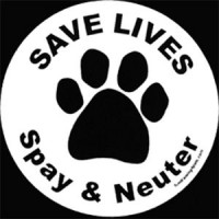 SPAY AND NEUTER – IT'S THE LAW!